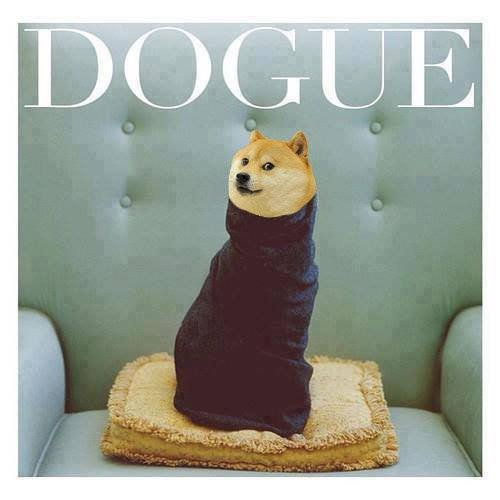 Wow+such+fashion+is+there+a+doge+channel_1132e2_4846301